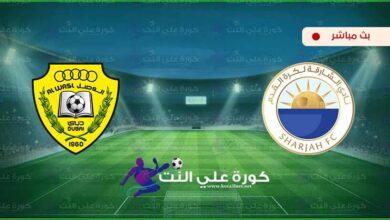 صورة بث مباشر | مشاهدة مباراة الشارقة والوصل اليوم في دوري الخليج العربي الاماراتي